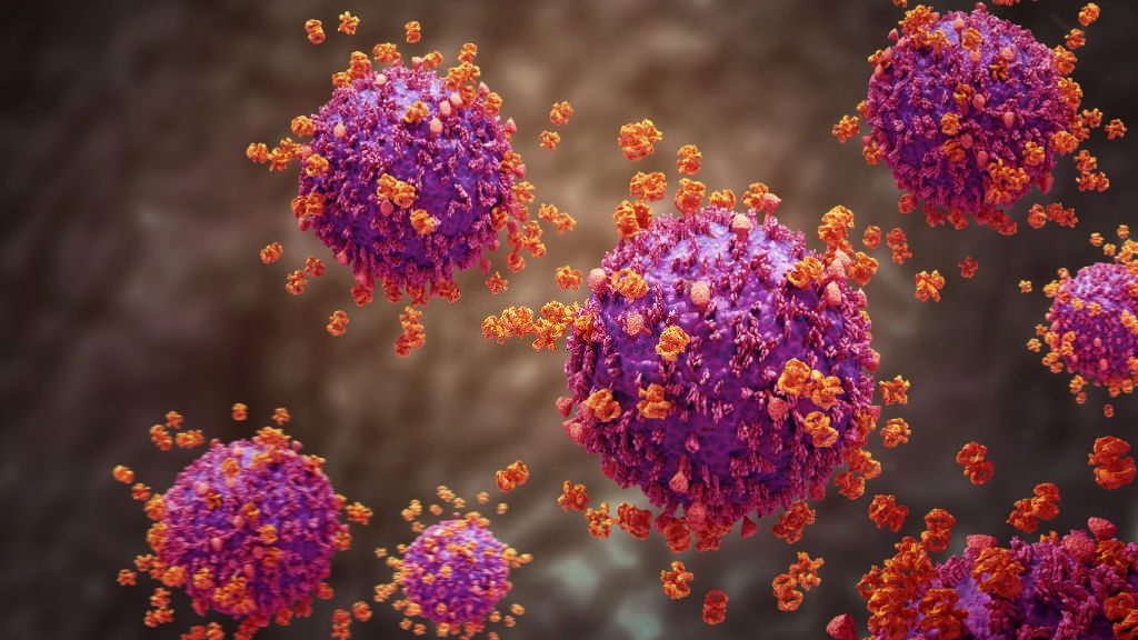 H1N1 e Sarampo – tire as suas dúvidas sobre as vacinas