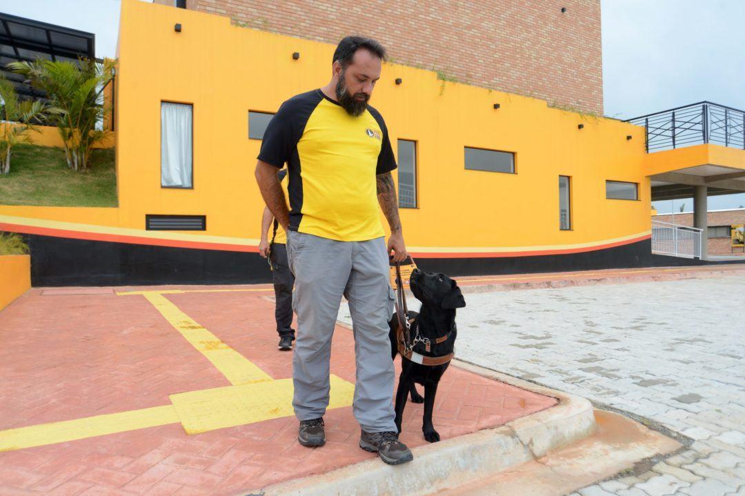 Dia internacional do cão-guia: número de cães no Brasil ainda é insuficiente frente à demanda