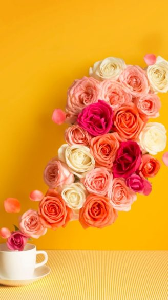 A stream of pastel tone rose flowing out from a tea cup on yellow background. Conceptual image.